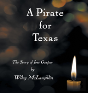 A Pirate For Texas