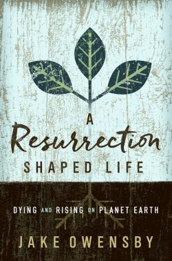 Bertrand.pt - A Resurrection Shaped Life