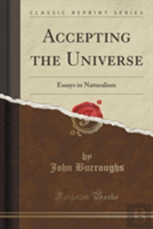Accepting The Universe: Essays In Naturalism (Classic Reprint)