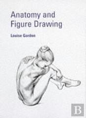 Anatomy And Figure Drawing