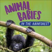 Animal Babies: In The Rainforest