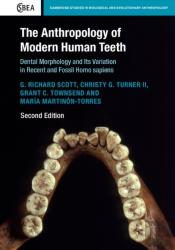 Anthropology Of Modern Human Teeth