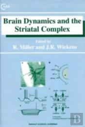 Brain Dynamics And The Striatal Complex