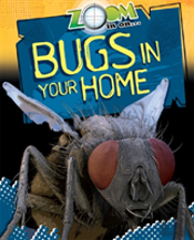 Bugs In Your Home