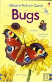 Bugs Nature Cards For Young Children