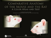 Comparative Anatomy Of The Mouse And The Rat