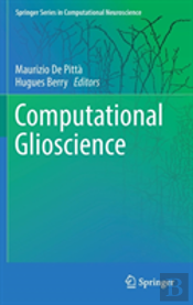 Computational Glioscience