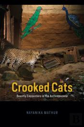 Crooked Cats