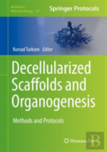 Decellularized Scaffolds And Organogenesis