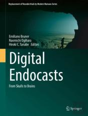 Digital Endocasts
