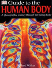 Dk Guide To The Human Body 1st Edition - Cased