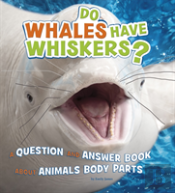 Do Whales Have Whiskers?