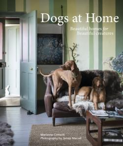 Bertrand.pt - Dogs At Home