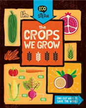 Eco Steam: The Crops We Grow