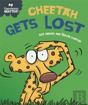 Experiences Matter: Cheetah Gets Lost