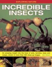 Exploring Nature: Incredible Insects
