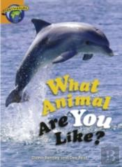 Fact World Stage 4: What Animal Are You Like?