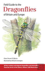 Field Guide Dragonflies Of Brit & Europe
