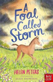 Foal Called Storm
