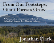 From Our Footsteps, Giant Forests Grow