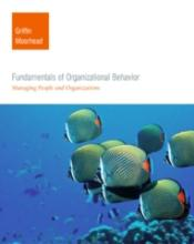 Fundamentals Of Organisational Behaviour
