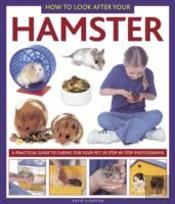 How To Look After Your Hamster
