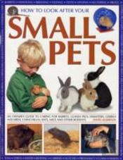 How To Look After Your Small Pets