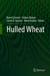 Hulled Wheat