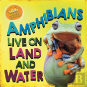 In The Animal Kingdom: Amphibians Live On Land And In Water