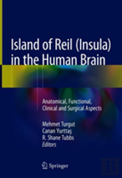 Island Of Reil (Insula) In The Human Brain
