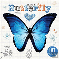 Bertrand.pt - Life Cycle Of A Butterfly