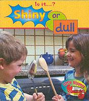 LITTLE NIPPERS: IS IT - SHINY OR DULL