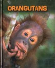 Living In The Wild: Primates: Living In The Wild: Primates Pack A Of 6