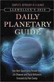Llewellyn'S 2019 Daily Planetary Guide