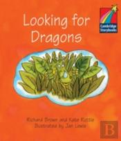 Looking for Dragons