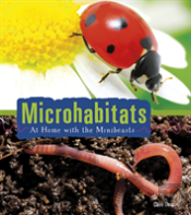 Microhabitats At Home With The Minibeast