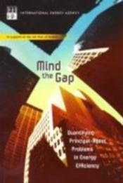 Mind The Gap - Quantifying Principal-Agent Problems In Energy Efficiency