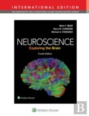 Neuroscience Brain 4e Int Ed