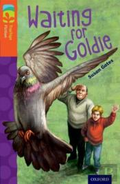 Oxford Reading Tree Treetops Fiction: Level 13: Waiting For Goldie