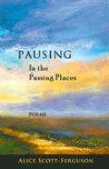 Pausing In The Passing Places