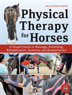 Bertrand.pt - Physical Therapy For Horses