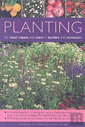 Planting For Visual Impact And Scent In Borders And Containers