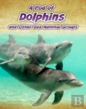 Pod Of Dolphins & Other Sea Mammal Group