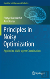 Principles In Noisy Optimization