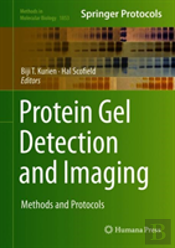 Protein Gel Detection And Imaging