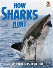 Shark! How Sharks Hunt