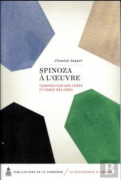 Spinoza A L Oeuvre