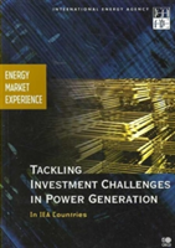 Tackling The Investment Challenges In Power Generation In Iea Countries