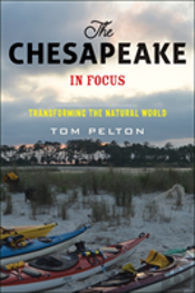 The Chesapeake In Focus