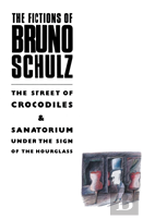 The Fiction Of Bruno Schulz